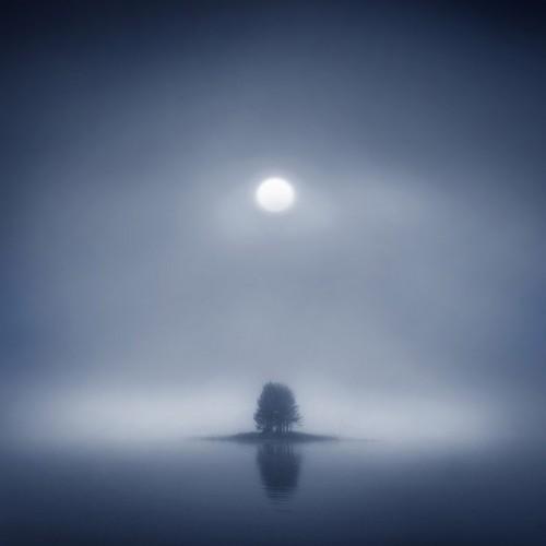 Ilari-tuupanen-foggy-nights-shanqa