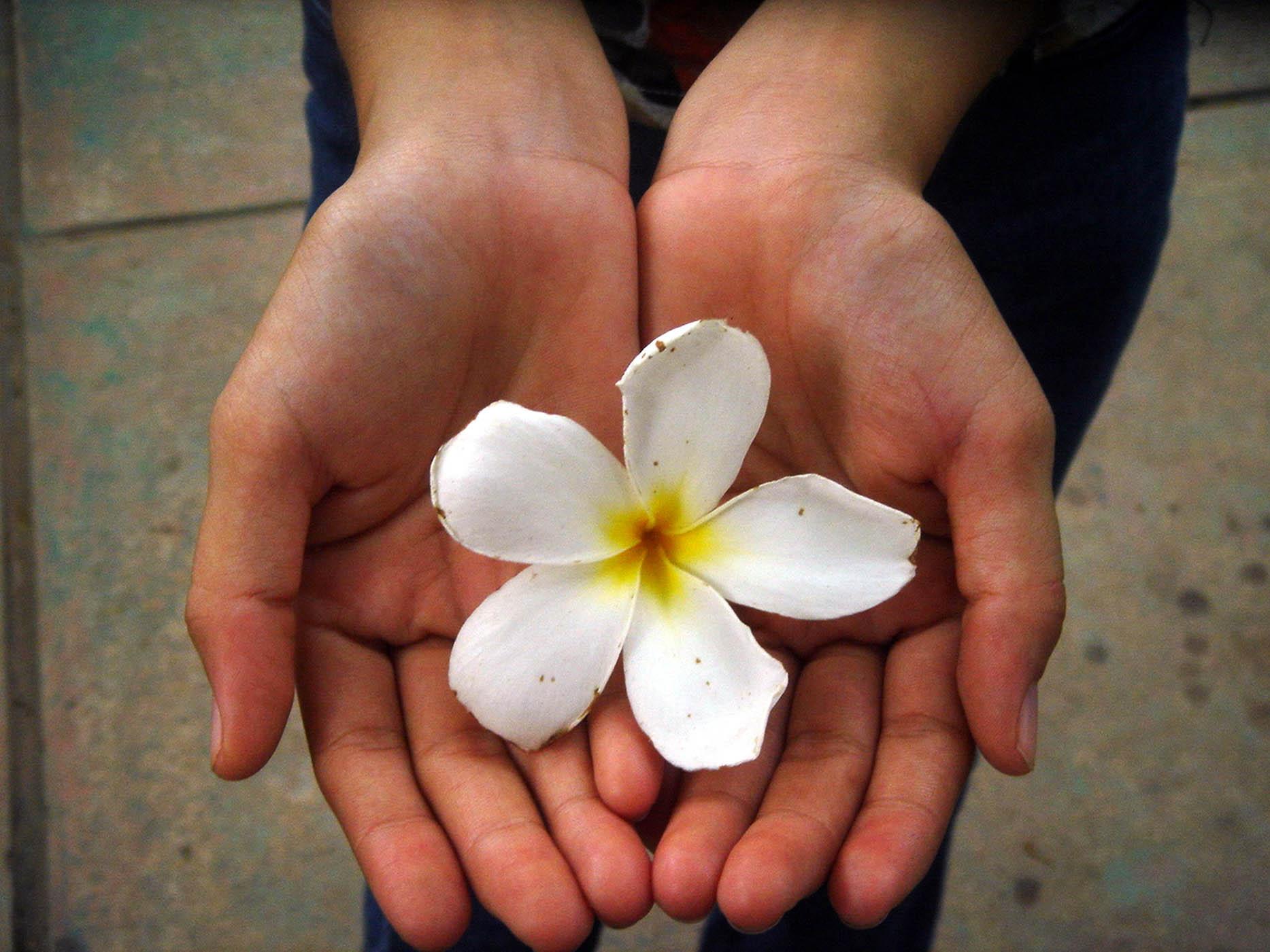 flower-reiki