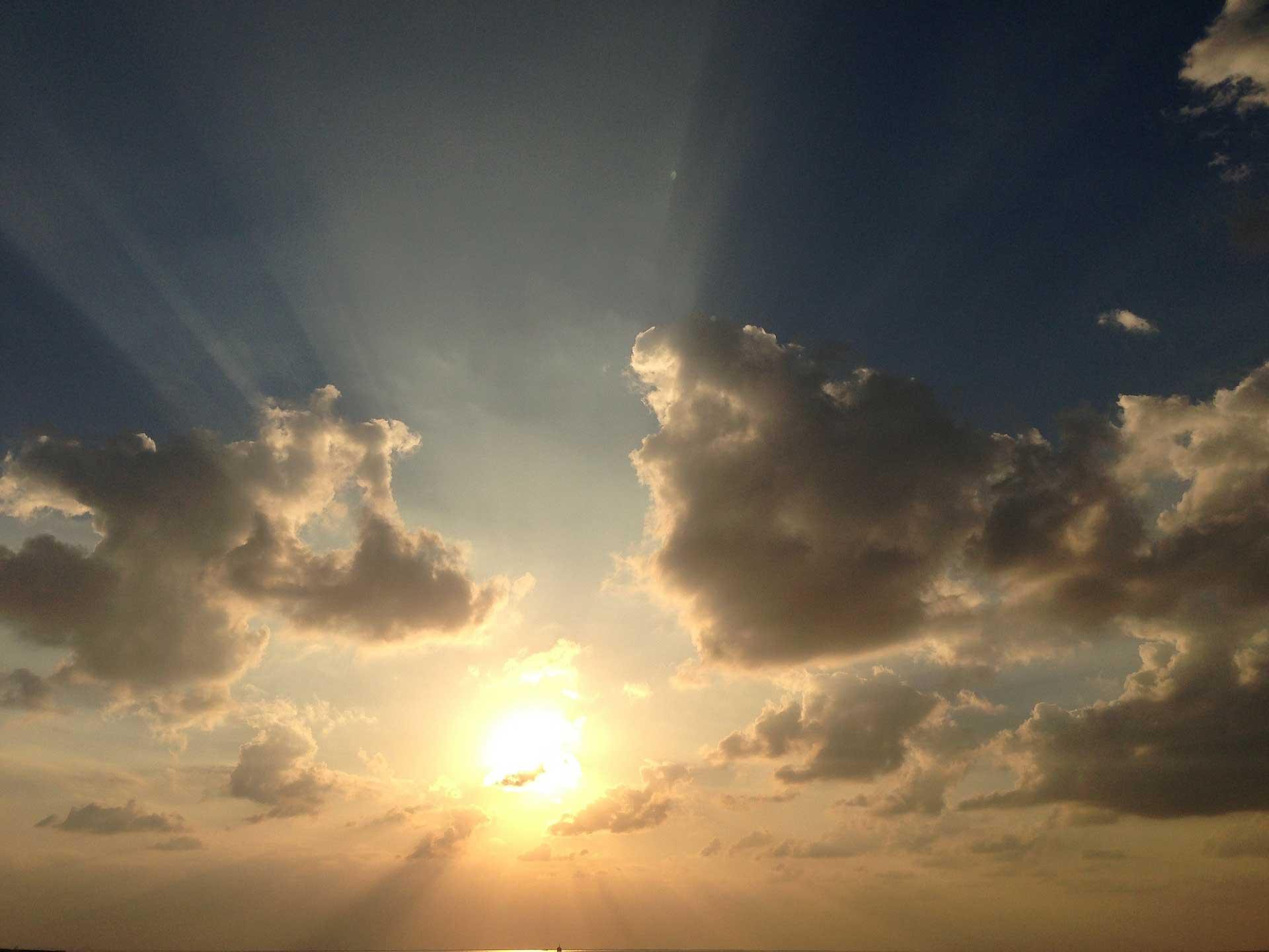 radiate-sunlight