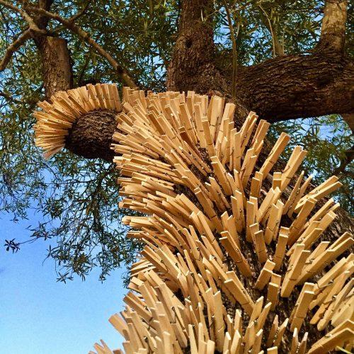 siddarth-tree2